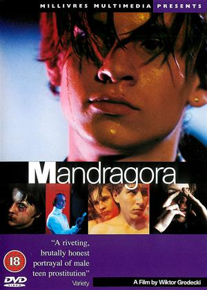 Rent Mandragora Online DVD Rental