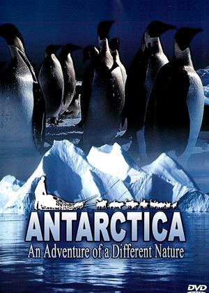 Antarctica: An Adventure of a Different Nature Online DVD Rental