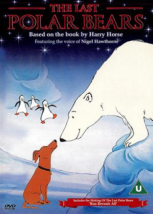 Rent The Last Polar Bears Online DVD Rental