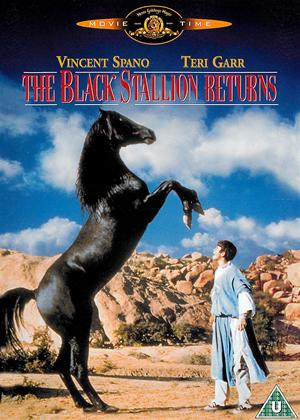 The Black Stallion Returns Online DVD Rental