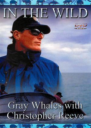 In the Wild: Gray Whales with Christopher Reeve Online DVD Rental