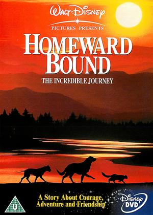 Homeward Bound Online DVD Rental