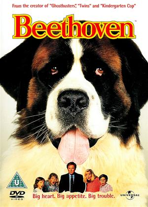 Rent Beethoven Online DVD Rental