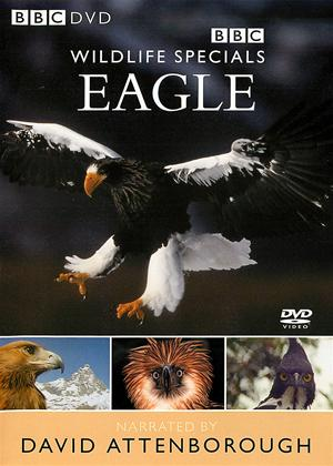 Wildlife Special: Eagle Online DVD Rental