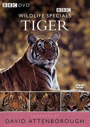 Wildlife Special: Tiger Online DVD Rental