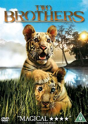 Two Brothers Online DVD Rental