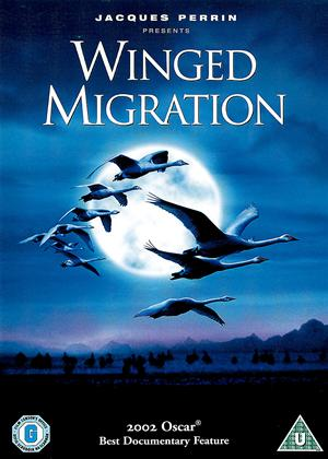 Winged Migration Online DVD Rental