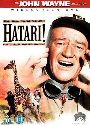 Hatari! Online DVD Rental