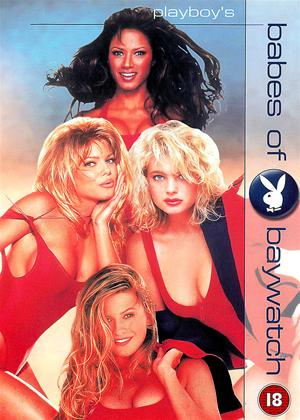 Rent Playboy: Babes of Baywatch Online DVD Rental