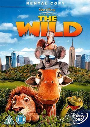 Rent The Wild Online DVD Rental