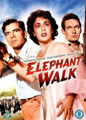 Elephant Walk Online DVD Rental