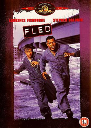Fled Online DVD Rental