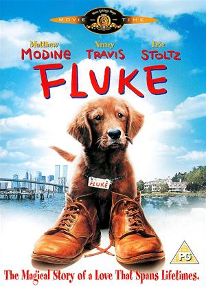 Rent Fluke Online DVD Rental