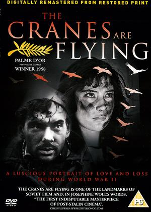 The Cranes Are Flying Online DVD Rental