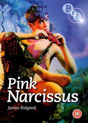 Pink Narcissus Online DVD Rental