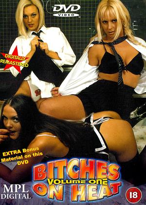 Rent Bitches on Heat: Vol.1 Online DVD Rental