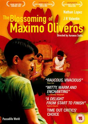 Blossoming of Maximo Oliveros Online DVD Rental
