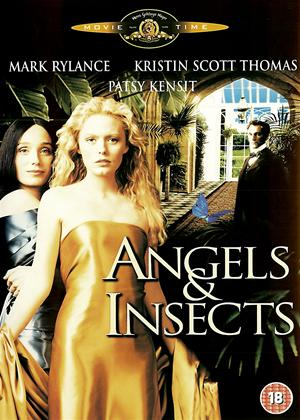 Rent Angels and Insects Online DVD Rental