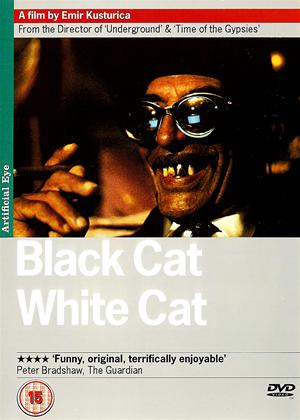Black Cat, White Cat Online DVD Rental