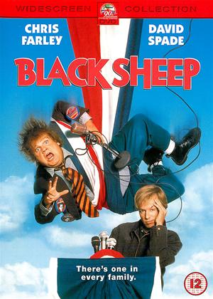 Black Sheep Online DVD Rental