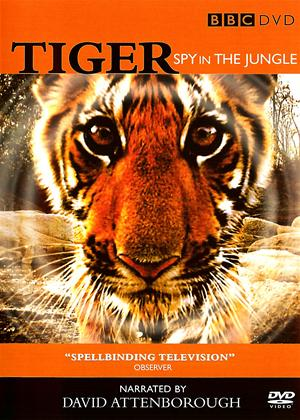 Tigers: Spy in the Jungle Online DVD Rental