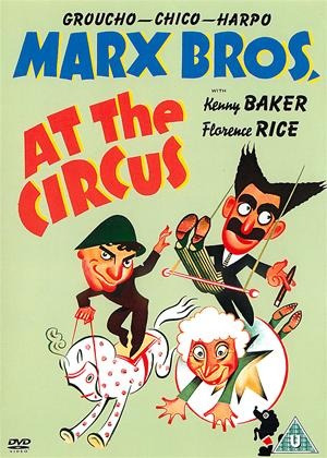 Rent The Marx Brothers: At the Circus Online DVD Rental