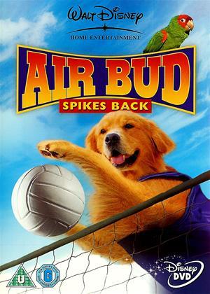 Rent Air Bud: Spikes Back Online DVD Rental