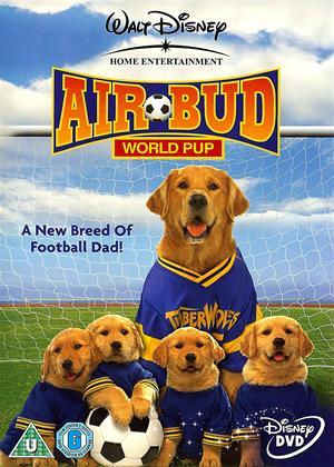 Rent Airbud: World Pup Online DVD Rental