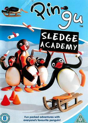 Pingu: Sledge Academy Online DVD Rental