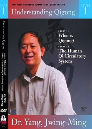 Rent Understanding Qigong: Vol.1 Online DVD Rental