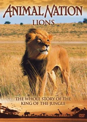Our World Their World: Lions: The Whole Story Online DVD Rental