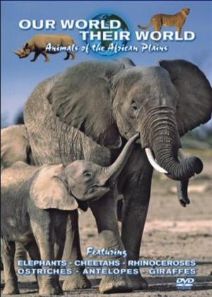 Rent Our World Their World: Animals of the African Plains Online DVD Rental