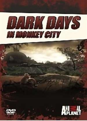 Dark Days in Monkey City Online DVD Rental