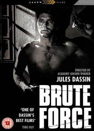 Brute Force Online DVD Rental