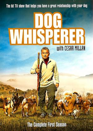 Dog Whisperer: Series 1 Online DVD Rental