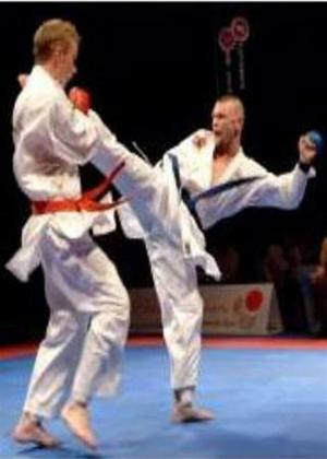 Very Best of Karate Clashes Online DVD Rental