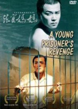 A Young Prisoner's Revenge Online DVD Rental