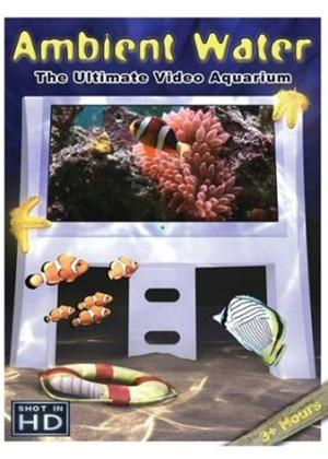 Rent Ambient Water: The Ultimate Aquarium Online DVD Rental