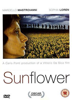Sunflower Online DVD Rental