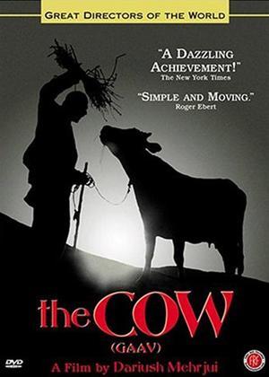 Rent The Cow Online DVD Rental
