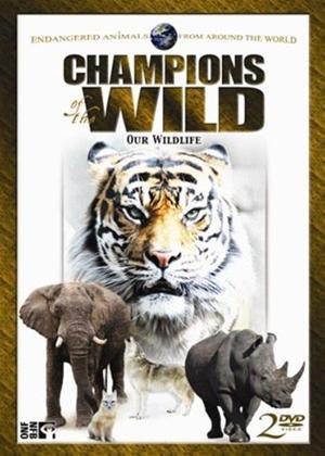 Rent Champions of the Wild: Vol.1 Online DVD Rental