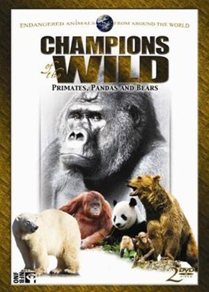 Rent Champions of the Wild: Vol.2 Online DVD Rental