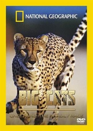 Rent Big Cats: Cheetahs the Deadly Race Online DVD Rental