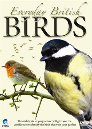 Everyday British Birds Online DVD Rental
