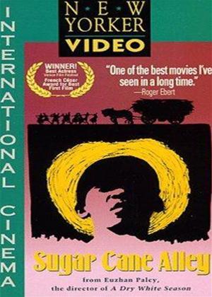 Black Shack Alley Online DVD Rental