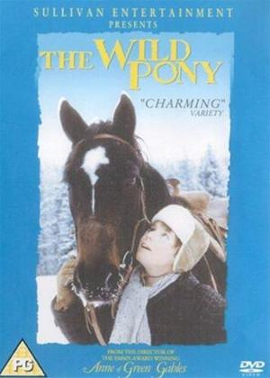 The Wild Pony Online DVD Rental