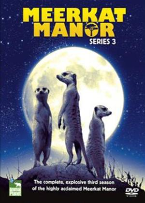 Rent Meerkat Manor: Series 3 Online DVD Rental