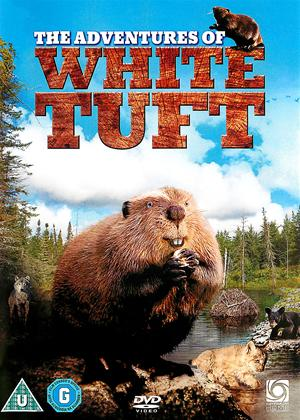Rent The Adventures of the White Tuft (aka Les Aventures Du Petit Castor) Online DVD Rental