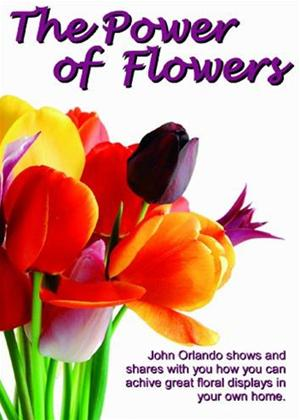 Rent The Power of Flowers Online DVD Rental