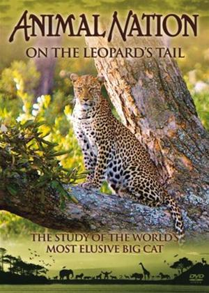 Rent Animal Nation: On The Leopard's Tail Online DVD Rental